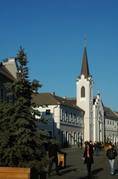 Biserica Romano-Catolica Sf. Ana Oradea