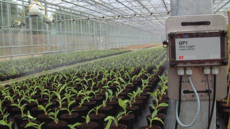 Monitorizati umiditatea solului cu data logger GP1 și senzor de umiditate sol